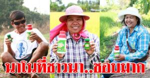 เนื้อคู่เกษตรกรไทย.. 'กรีนนาโน' สุดยอดหารพืชทางใบ เสกพุทราให้ดกเต็มต้น