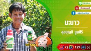 กรีนนาโน! เกษตรอินทรย์ทางเลือกกับเกษตรกรไทย