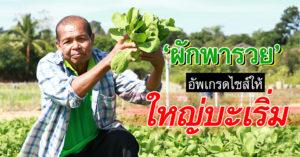 ชาวนาชอบมาก #นาโนแคปซูล หนึ่งเดียวในไทย ใบเขียวตั้งใน 7 วัน